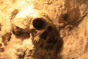 640px-Replica_of_Neanderthal_Skull_in_St._Michaels_Cave,_Gibraltar